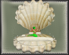 Shell Bed (animated)