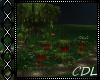 !C* U Flower Garden