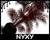 *N* Dark Plant I