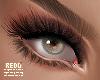 MxR Zell eyeshadow