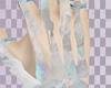 ✞ bone R