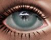 Grey -Eyes