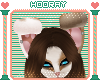 [H!] Mocha-Macha ears rq
