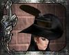 *C* The Mercenary Hat V2
