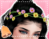 Spring Floral Crown Rq