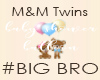 M&M Balloon - BRO