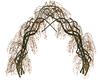 Delicate Vine Arch 3