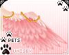 [Pets] Dei | wings v2