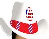 patriotic cowboiy hat