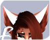 Cinna | Ears 6