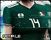 F Mexican Fan 18