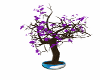 LS Cherry Blossum Tree