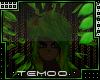 T|» Twig & Leaf Head