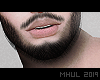 〽 Asteri - Beard&Lips