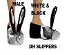 WBDHSlippers (MALE)