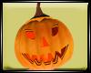 Dp Pumpkin M
