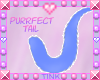 Purrfect | Blue Tail