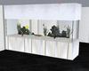 white fish tank