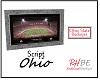 """RHBE.Script""""Ohio""""OSU"""