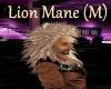 [BD]LionMane(M)