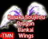 Kusaka  Sajin Wing