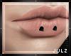 J. Allie Horizontal Lip