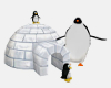 Penguin Igloo