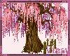 Anim. Cherry tree