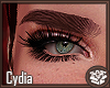 Cydia Eyebrows