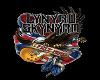 Lynard Skynard t shirt