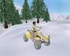 Winter Island Snow Buggy