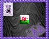 Welsh Flag Bling
