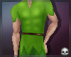 [T69Q] Peter Pan Outfit