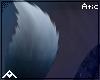 •| Moon | Tail