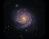 Neon Whirlpool Galaxy