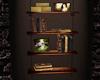 LC| Hanging BookShelf