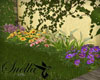 S= flowers Flora