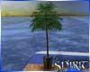 *S* Yacht palm