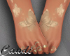 TXS  gold feet