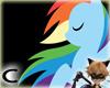 (C) Rainbow Dash Frame
