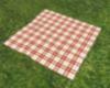 No Pose Picnic Blanket