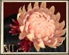ML Chun Flower
