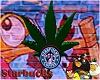 starbucks Clock