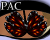 *PAC* Butterfly Dream Or
