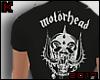 ᴷ Motorhead Crop