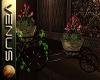 ~V~Dec Stroller/ plant2