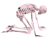 Skeleton Chair Pastel Pi