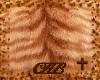 orange tiger cat skin