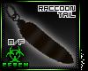 '| Raccoon.Clip |m/f
