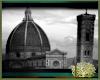 LS~Italian Photo 1